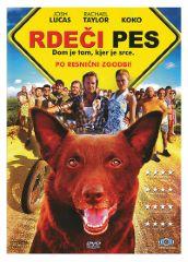 DVD RDEČI PES