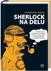 SHERLOCK NA DELU